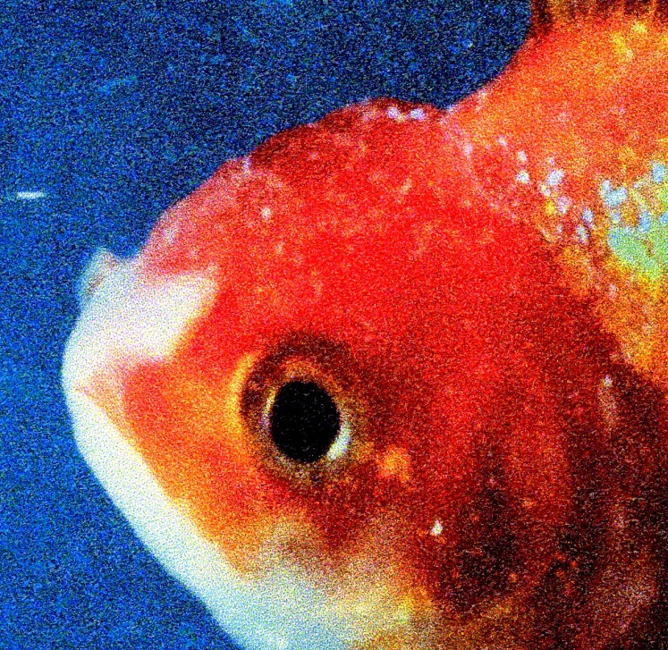 """Vince Staples – """"Big Fish Theory""""review"""